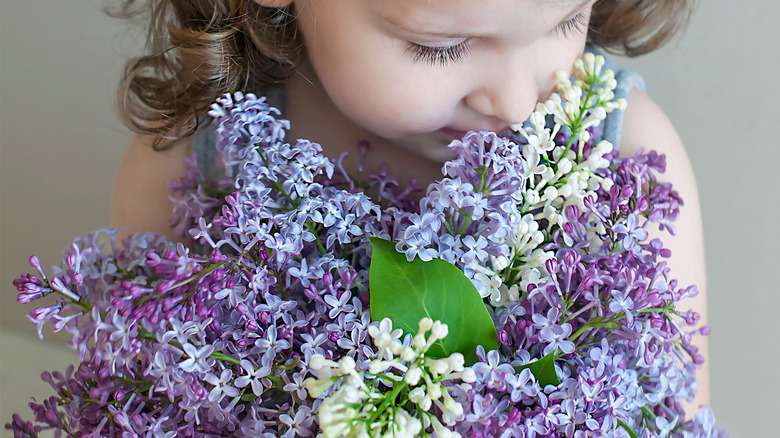 young girl toddler with purple flowers