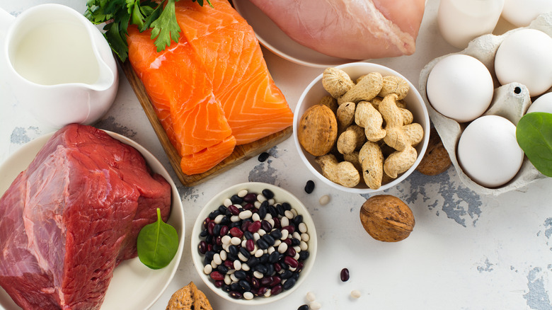 Sources of protein to lose weight