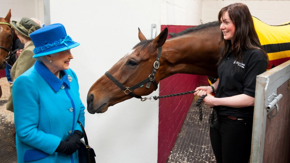 Queen Elizabeth with a horse