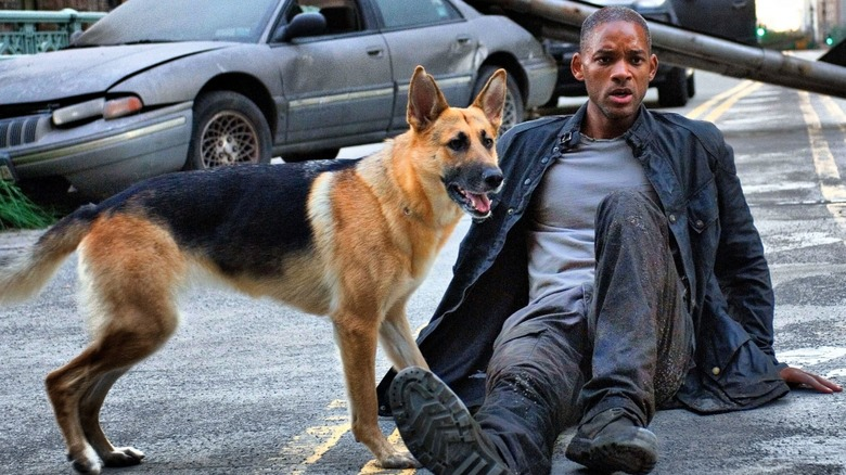 The Untold Truth Of These Celebrity Movie Dogs