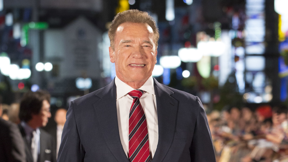 Arnold Schwarzenegger's Video On The Capitol Violence Has ...