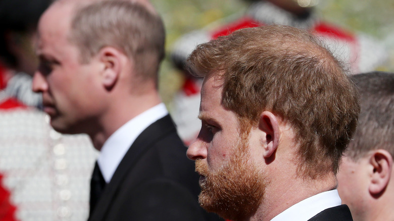 Prince William and Harry at Prince Philip's funeral