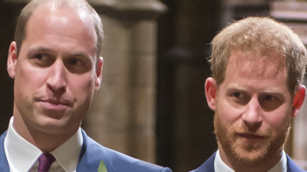 Prince William and Harry looking serious