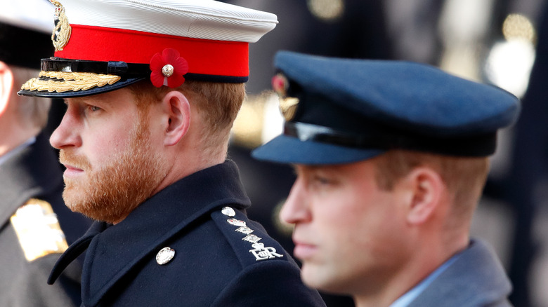 Prince Harry and Prince William at event