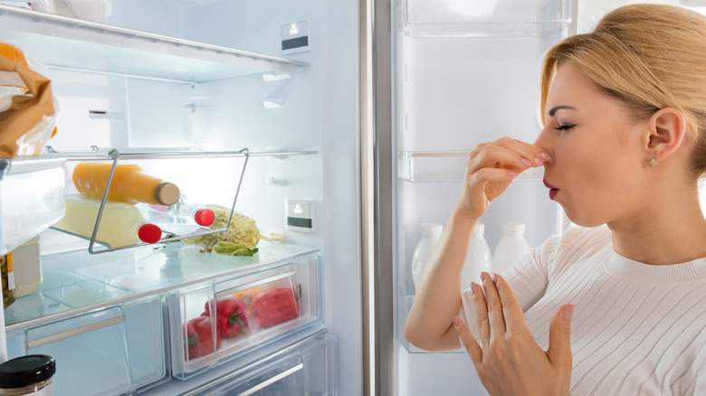 Woman in front of smelly fridge