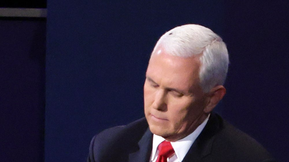 Mike Pence and fly