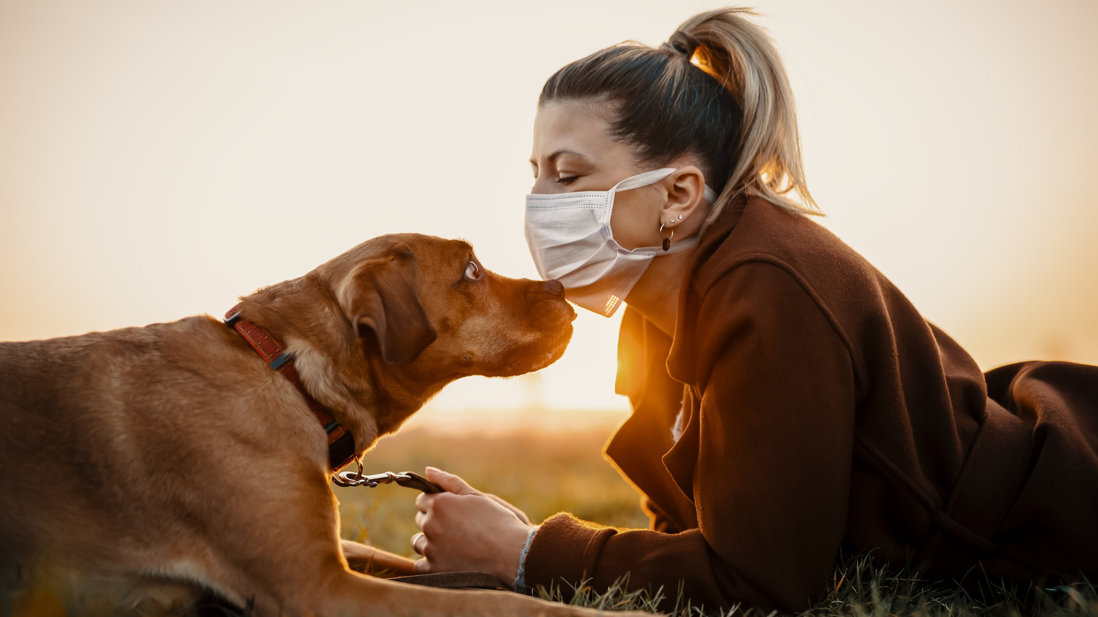 The Truth About Caring For Your Pets If You Have COVID-19