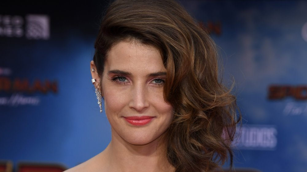 The Untold Truth Of Cobie Smulders