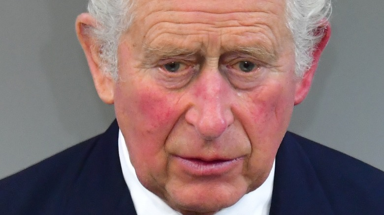 Prince Charles speaking at an event