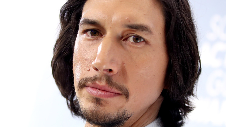 Adam Driver poses on the red carpet