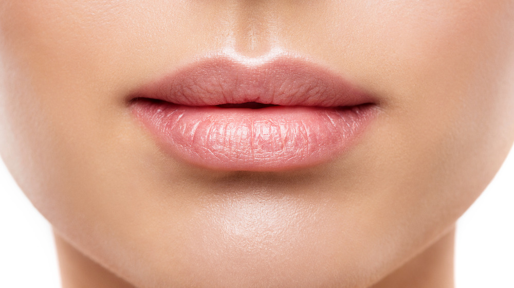 Close-up of full pink lips