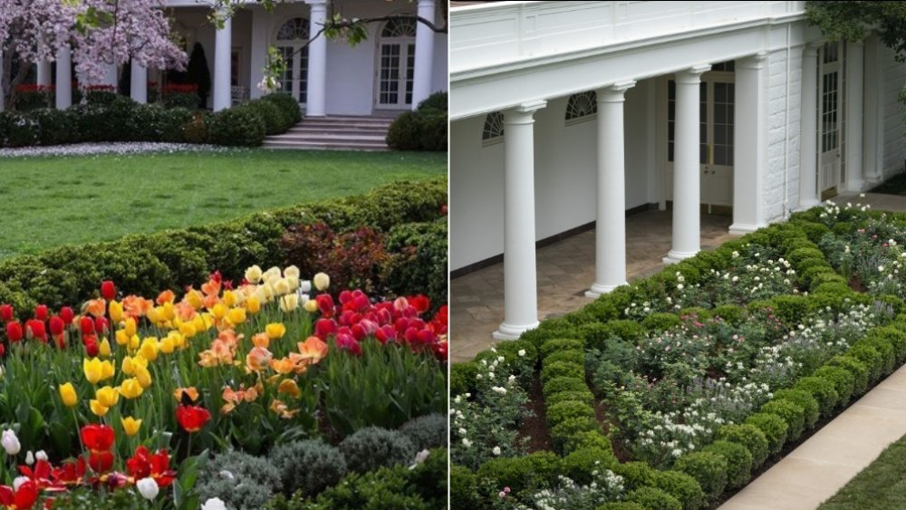 White House Rose Garden before and after the renovation